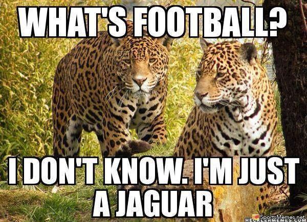10 Jaguars