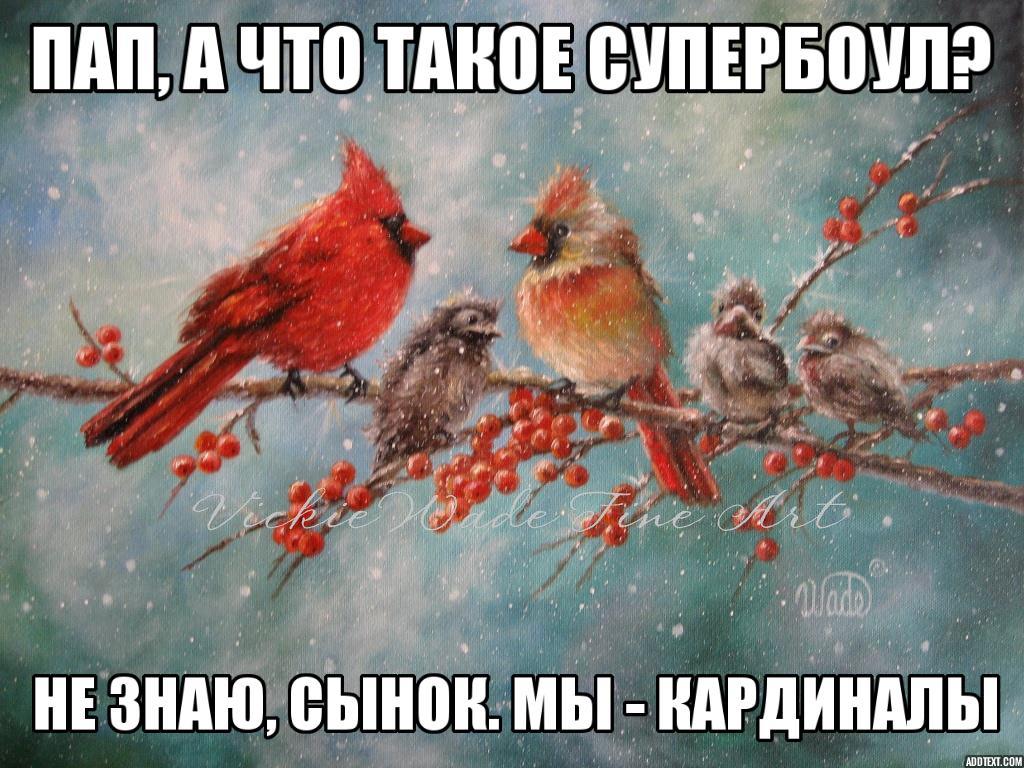 cardinals meme