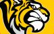 Стальные Тигры