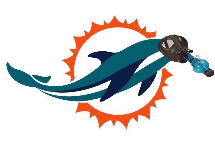 dolphins_meme