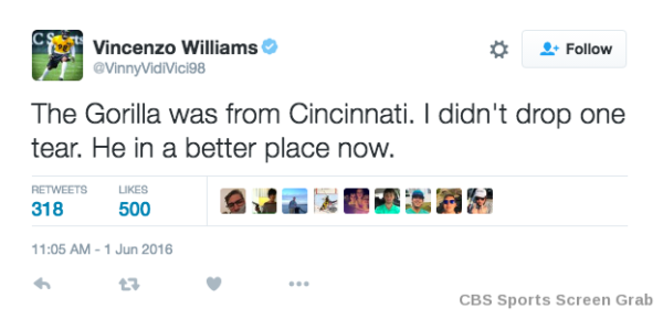 steelers-tweet-gorilla-CBS