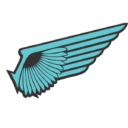 Novosibirsk Iron Wings